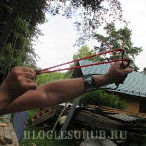 Направленная оттяжка деревьев — арбористика