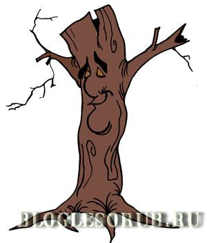 сухостойное-дерево картинки