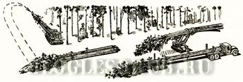 работа в леспромхозе картинки