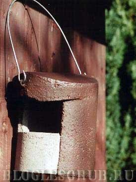 гнездовье-для-трясогузки фото