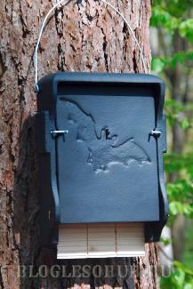 гнездовье-ящик фото