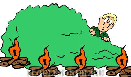 выжигание-сухой-травы картинки