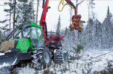 Лесные лесозаготовительные комплексы