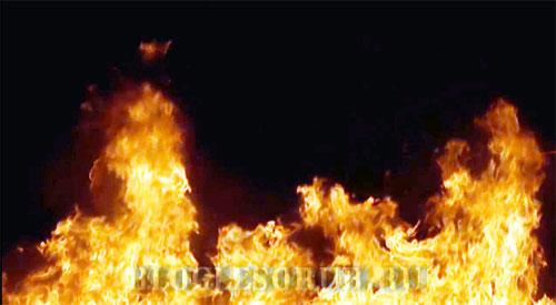 пожары-2017-года фото