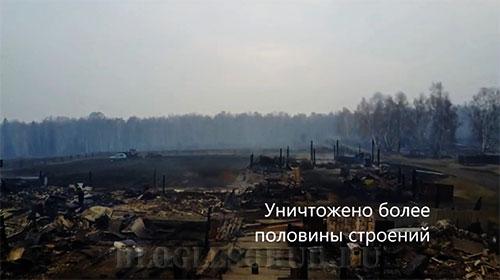 пожары-в-восточной-сибири фото