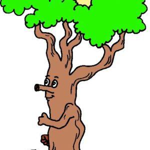 Размещение лесной промышленности