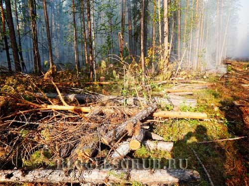пожары в иркутской области