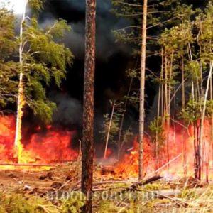 лесные пожары в иркутской области 2015