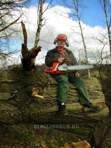 Коноплёв-на-дереве фото