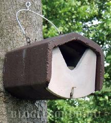 Гнездовье-для-горной трясогузки фото