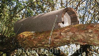 гнездо-для-совы фото