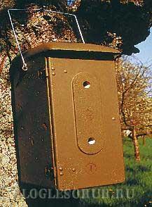 Гнездовье-коробка для шершней фото