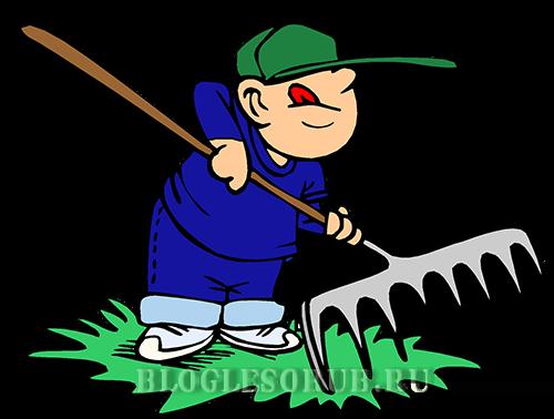 Мой опыт очистки лесосек