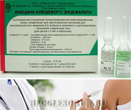 вакцина от клещевого энцефалита фото