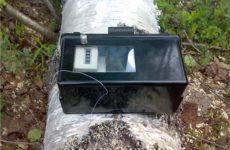 Что замеряют нитями в лесу лесники