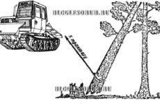 Зависшее дерево при валке